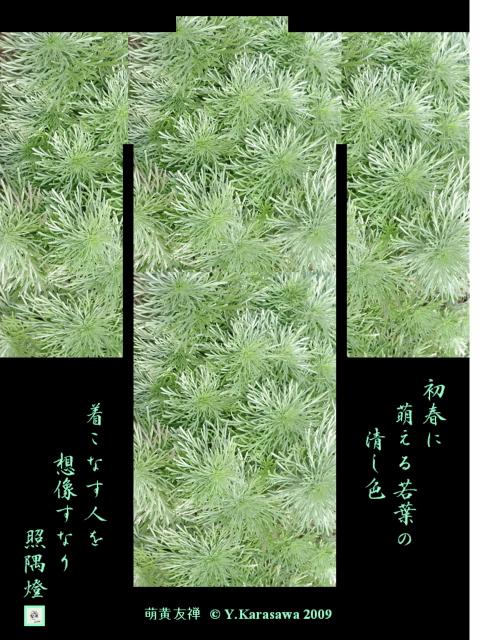 090117萌黄友禅