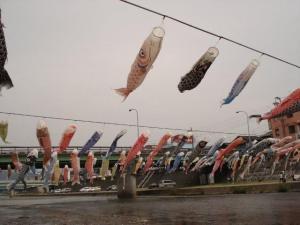 加茂・鯉のぼり
