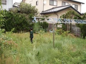 実家の庭1