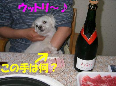 2007_0422_kent_1.jpg