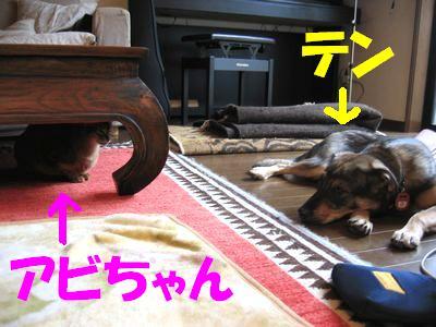2007_0715_ten_3.jpg