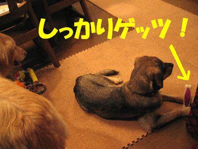 2007_0717_ten_4.jpg