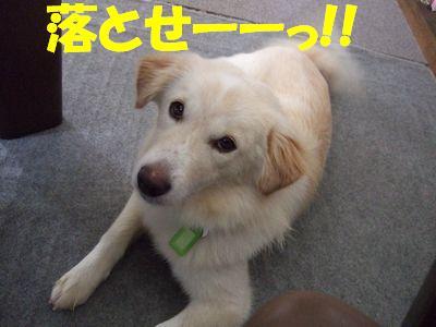 2007_0912_3.jpg