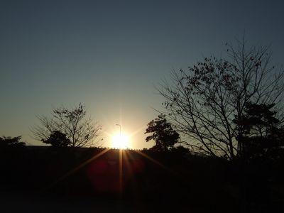 2007_1124_1.jpg