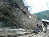 マイントピア別子(列車)