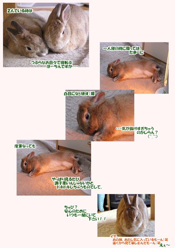 dokidokipo-0901.jpg