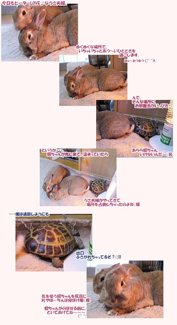 kyouzon0804.jpg