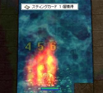 20061206_02.jpg