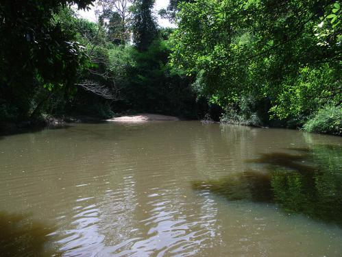 Thac Mai