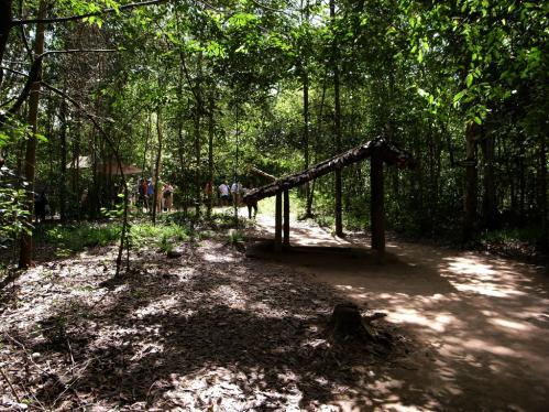 クチトンネルの森