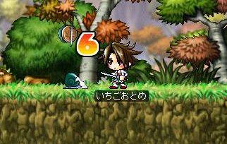 Maple0137.jpg