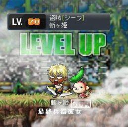 Maple0671.jpg
