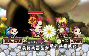 Maple0873.jpg