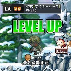 Maple1137.jpg