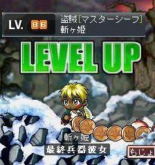 Maple1167.jpg