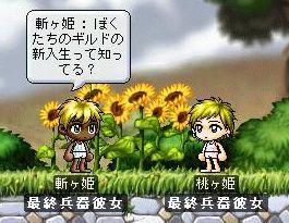 Maple1405.jpg