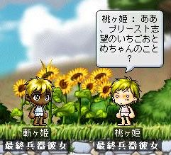 Maple1406.jpg