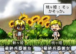 Maple1434.jpg