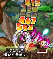 Maple1477.jpg