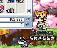 Maple1803.jpg