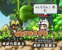 Maple2029.jpg