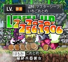 Maple2074.jpg