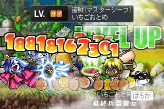 Maple2245.jpg