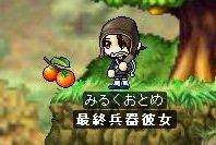 Maple2428.jpg