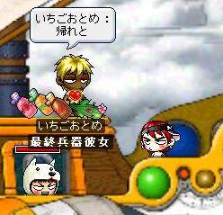 Maple2508.jpg
