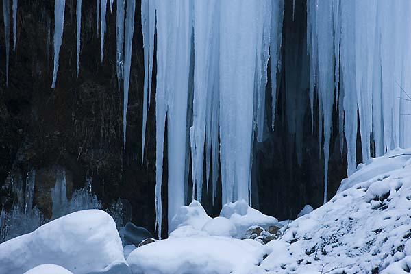 氷024W8019