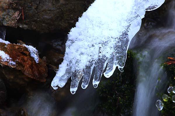 氷024W8041