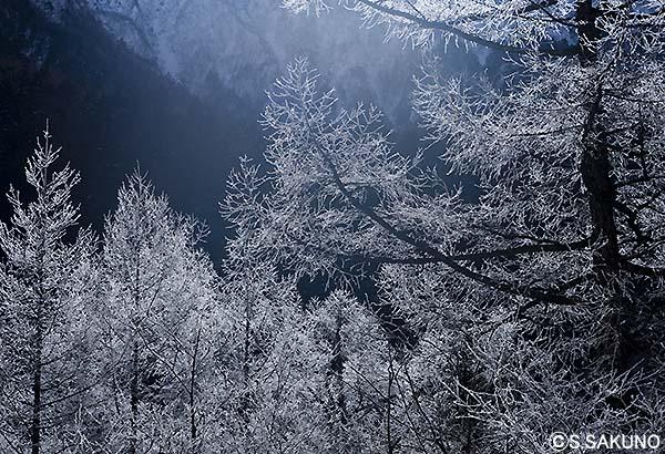 霧氷4024W9024