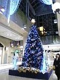 20081108191251