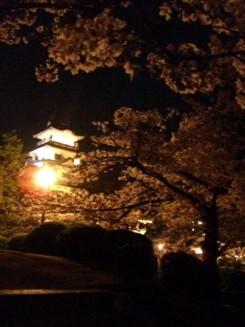 桜の向こうに天守閣