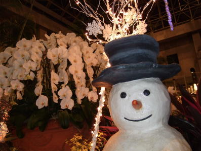 ランの館 クリスマスイルミネーション