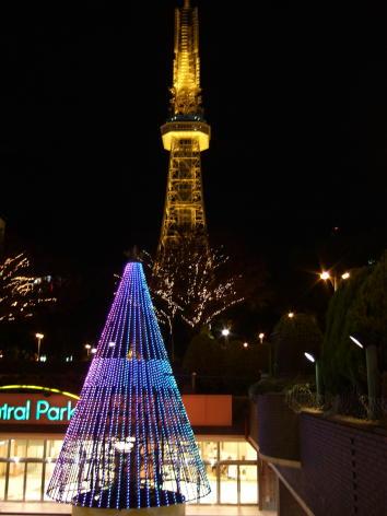 栄セントラルパークもちの木広場