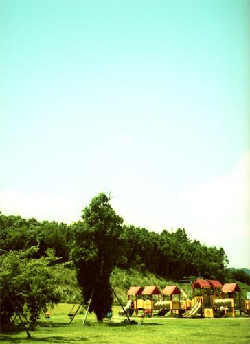 森の中の小さなお家