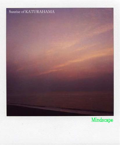 桂浜から見る日の出1