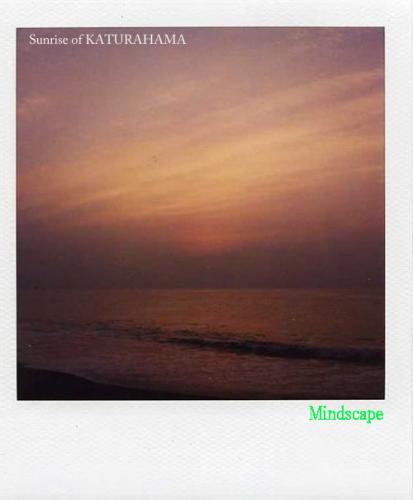 桂浜から見る日の出2