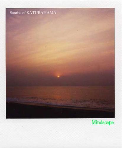 桂浜から見る日の出3