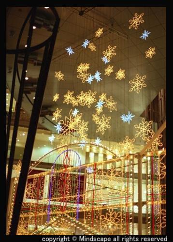 クリスマス・イルミ1