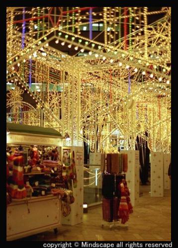 クリスマス・イルミ2
