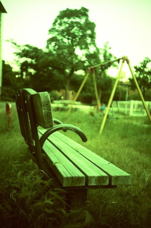公園のベンチ(ありがちで申し訳ない 滝汗)