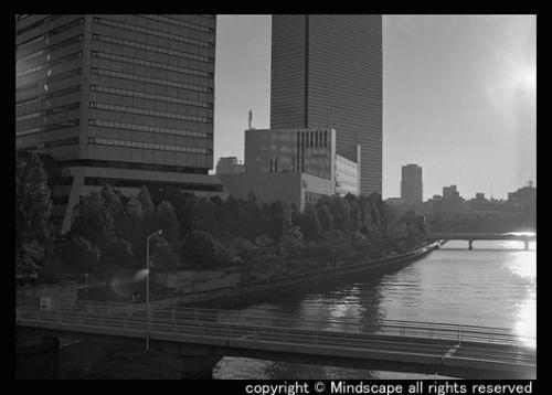 寝屋川運河の夕陽