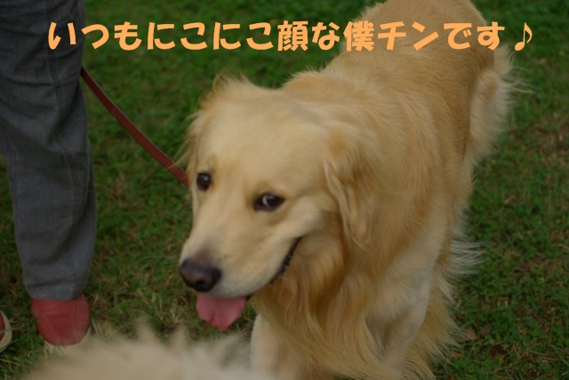 04お散歩4.jpg