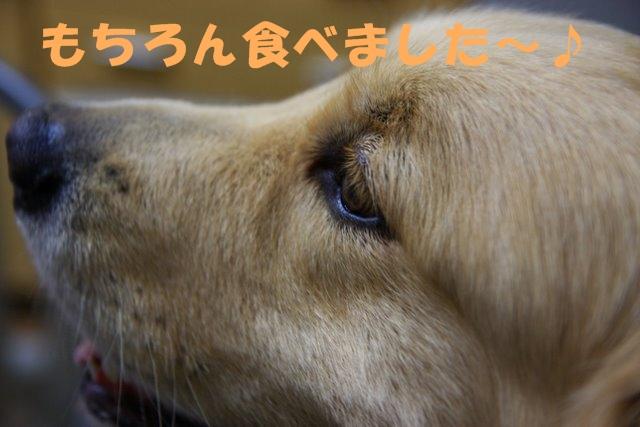 14おまけ3.JPG