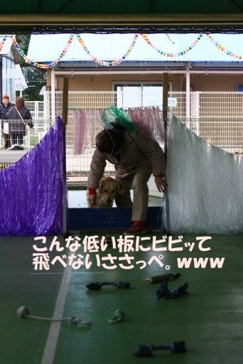 04障害物4.JPG