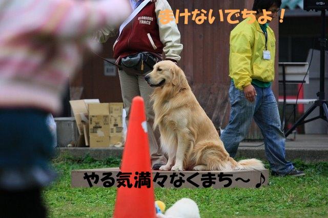 06運動会1.JPG