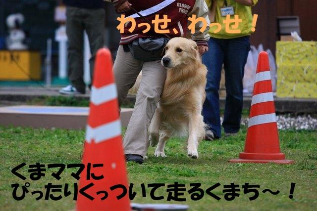 07運動会2.JPG