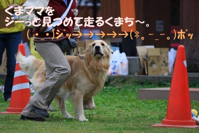 08運動会3.JPG